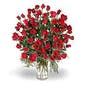5 Dozen Red Roses Vased