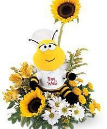 Bee Well Bqt