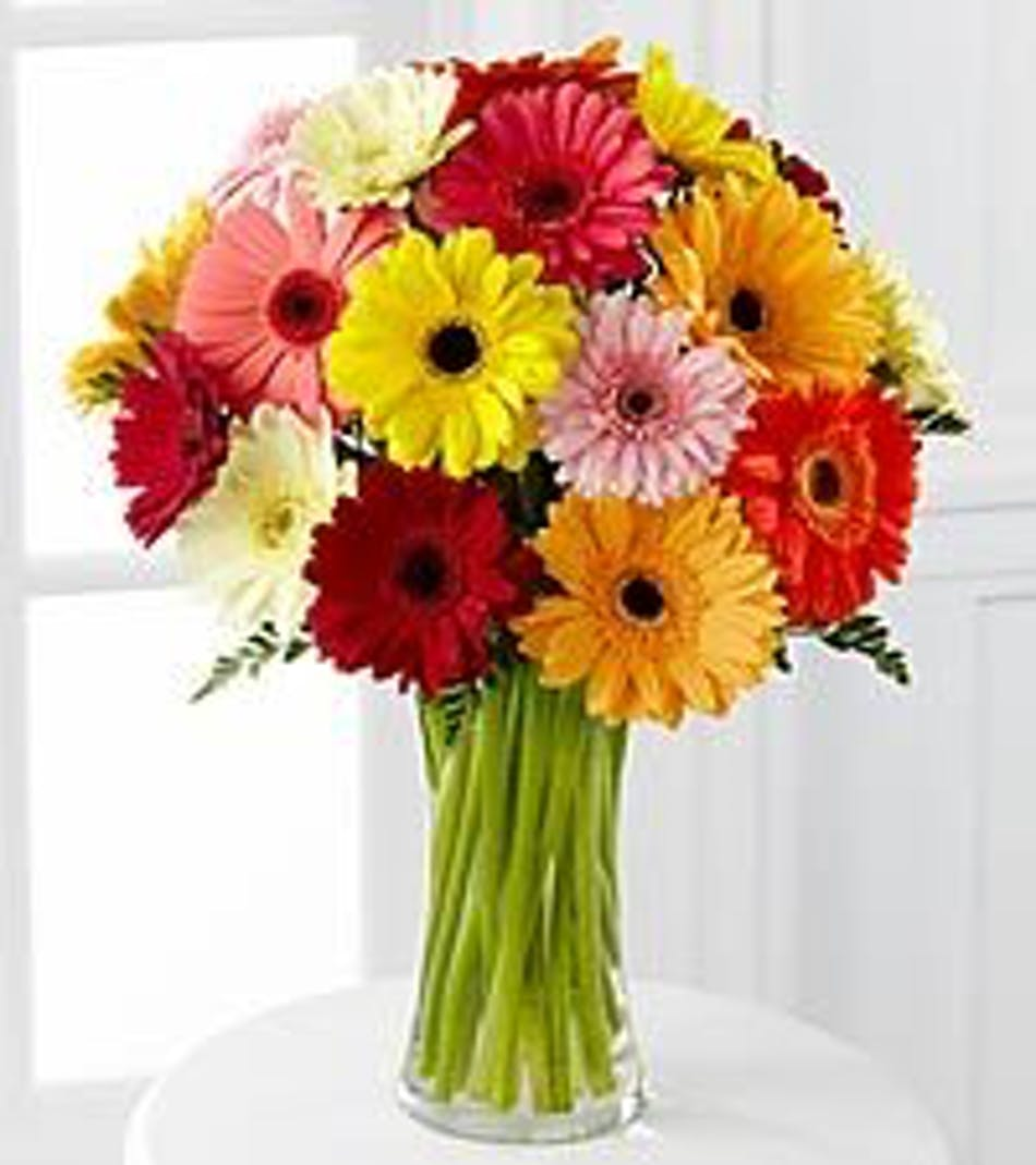 Colorful world muticolored gerbs flower arrangements in chicago available for nationwide delivery izmirmasajfo