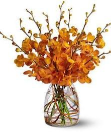 Extravagantly Orange