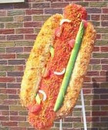 Chicago Style Hot Dog