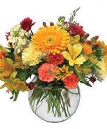 Affordable Natural Setting of Cut Flowers